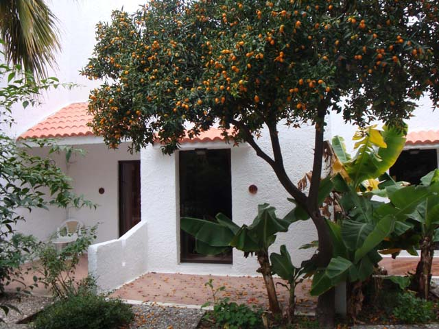 Oasis Hotel & Bungalows -