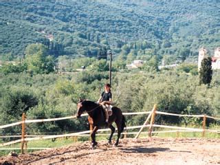 Avdou Villas - Horses