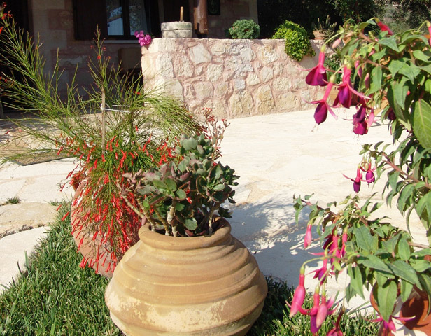 Villa Petra - Garden