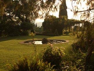 Corfu Villas ( Villa Sylva) - Garden View