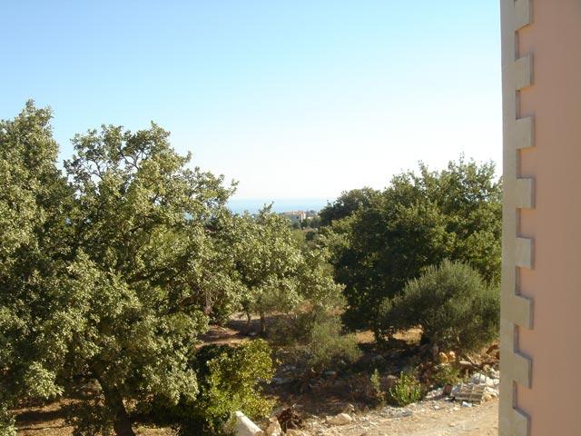 Aloe and Lotus Villas - Villa Lotus - Exterior View