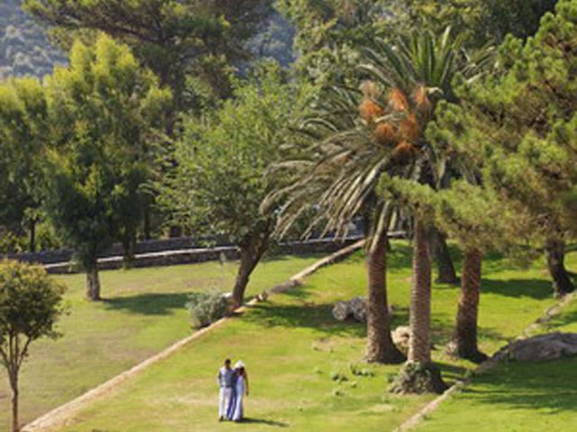Atlantica Grand Mediterraneo Resort & Spa - Gardens