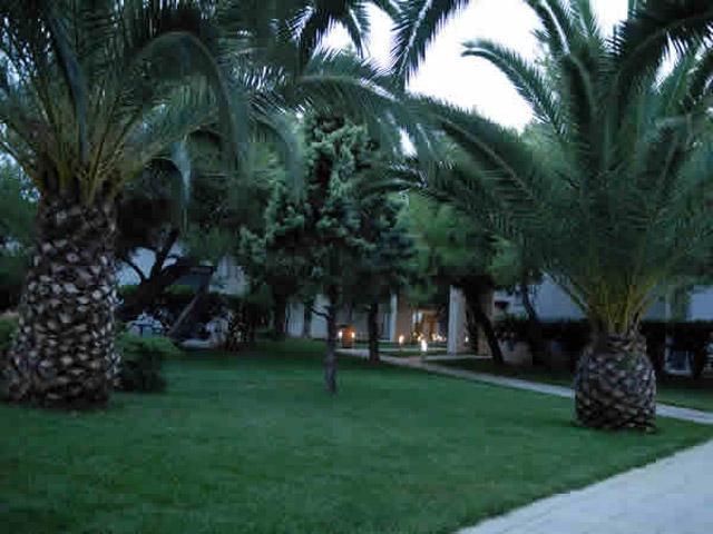 Onar Hotel - Gardens