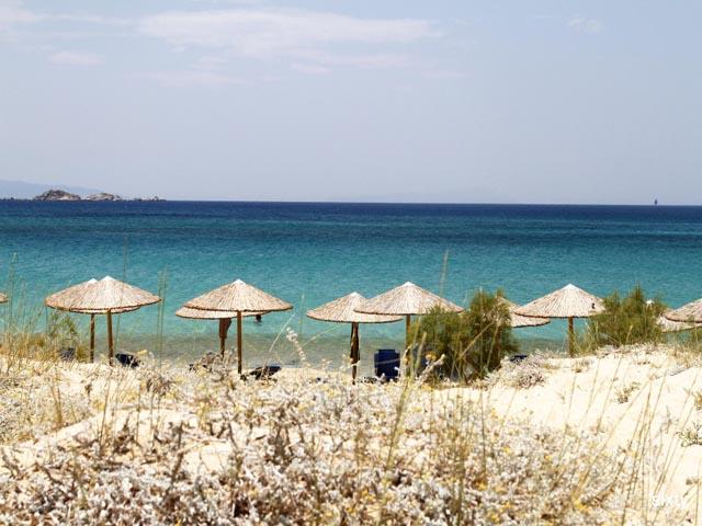 Medusa Resort -
